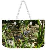 Gator Sunning Weekender Tote Bag