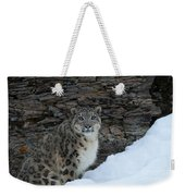 Gaze Of The Snow Leopard Weekender Tote Bag
