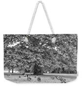 Geese By The River Weekender Tote Bag by Bill Cannon