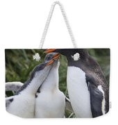 Gentoo Penguin Parent And Two Chicks Weekender Tote Bag