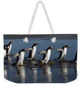 Gentoo Penguin Pygoscelis Papua Group Weekender Tote Bag