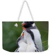 Gentoo Penguin Pygoscelis Papua Hungry Weekender Tote Bag