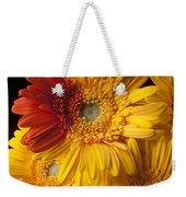 Gerbera Daisy With Orange Petals Weekender Tote Bag