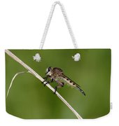 Giant Robber Fly - Promachus Hinei Weekender Tote Bag
