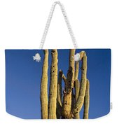 Giant Saguaro Cactus Portrait With Blue Sky Weekender Tote Bag