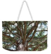 Giant Sequoias Weekender Tote Bag