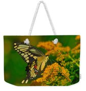 Giant Swallowtail On Goldenrod Weekender Tote Bag