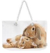 Ginger Kitten Lying With Sandy Lionhead Weekender Tote Bag