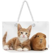 Ginger Kitten With Red Guinea Pig Weekender Tote Bag