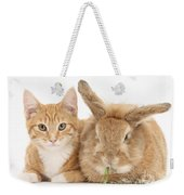 Ginger Kitten With Sandy Lionhead-cross Weekender Tote Bag