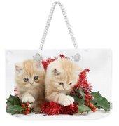 Ginger Kittens Weekender Tote Bag