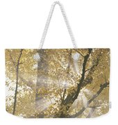 Ginkgo Tree With Sunlight Streaming Weekender Tote Bag