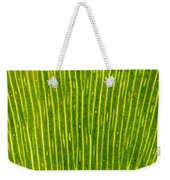 Ginko Tree Leaf Weekender Tote Bag