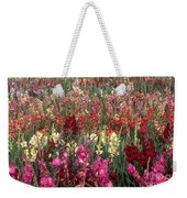 Gladioli Garden In Early Fall Weekender Tote Bag