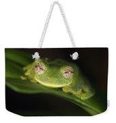 Glass Frog Centrolene Tayrona, Sierra Weekender Tote Bag