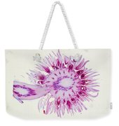 Globe Thistle Flower Lm Weekender Tote Bag