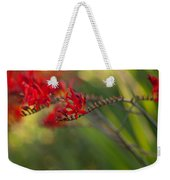 Glorious Red Weekender Tote Bag