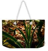 Glowing Iris Plant 3 Weekender Tote Bag