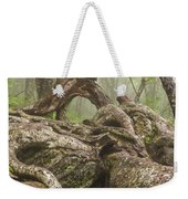 Gnarly Old Tree In Fog Along The Blue Ridge Parkway Weekender Tote Bag by Bill Swindaman