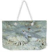 Goby With A Hermit Crab, Australia Weekender Tote Bag