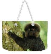 Goeldis Monkey Callimico Goeldii Weekender Tote Bag