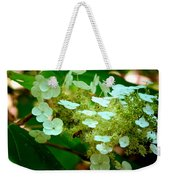 Going In For The Sweet Stuff Weekender Tote Bag