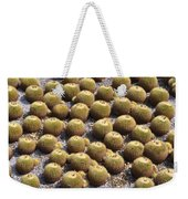 Golden Barrel Cactus 1 Weekender Tote Bag