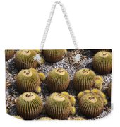 Golden Barrel Cactus 2 Weekender Tote Bag