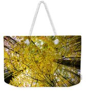 Golden Canopy Weekender Tote Bag by Rick Berk