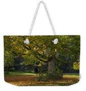 Golden Cappadocian Maple. Weekender Tote Bag