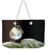 Golden-crowned Kinglet Weekender Tote Bag