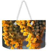 Golden Grapes Weekender Tote Bag by Elaine Plesser