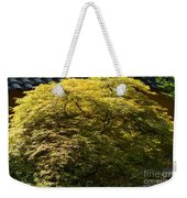Golden Japanese Maple Weekender Tote Bag