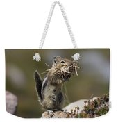 Golden-mantled Ground Squirrel Weekender Tote Bag