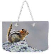 Golden-mantled Ground-squirrel Weekender Tote Bag