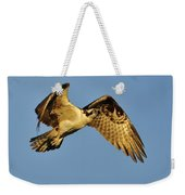 Golden Osprey In Dawn's Early Light Weekender Tote Bag