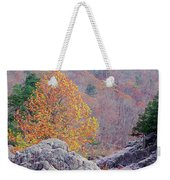 Golden Poplar Among The Rocks At Johnsons Shut Ins State Park Weekender Tote Bag
