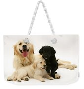 Golden Retriever And Puppies Weekender Tote Bag by Jane Burton