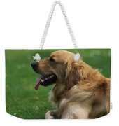 Golden Retriever Dog Laying In The Grass Weekender Tote Bag