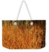 Golden Silver Grass Weekender Tote Bag