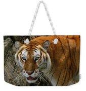 Golden Tabby Bengal Tiger Weekender Tote Bag