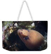 Golden Tail Eel Weekender Tote Bag