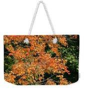 Golden Tree Moment Weekender Tote Bag