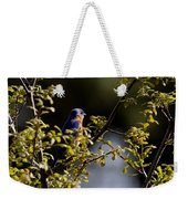Good Morning Sunshine - Eastern Bluebird Weekender Tote Bag