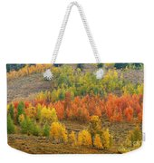 Grand Teton Fall Color Weekender Tote Bag