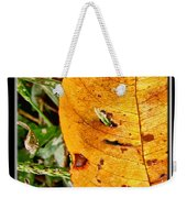 Grass Grows Through The Leaf Window Weekender Tote Bag