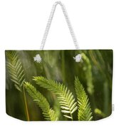 Grass Stems And Seed No.2129 Weekender Tote Bag