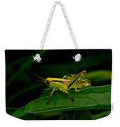 Grasshopper 1 Weekender Tote Bag