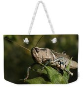 Grasshopper 2 Weekender Tote Bag