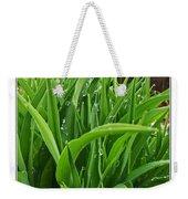 Grassy Drops Weekender Tote Bag